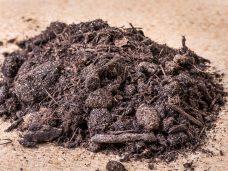 karripeat-mulch